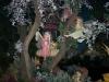 efteling_17_20100902_1217370625